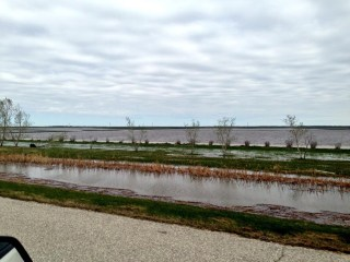 Overland flooding near Oak Bluff, MB