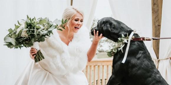 noiva olhando com um grande sorriso para seu cachorrinho Zeke
