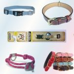 Top 11 Dog Collars – Keep Your Dog Safe with Our Stylish Collars
