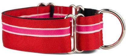 If It Barks Nylon Martingale Dog Collar