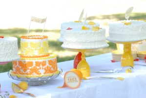 Cake Table Featuring 7 Different Flavored Cakes and DIY Cake Stands