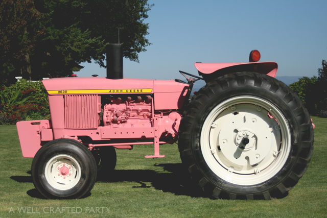 One of the attractions of the farm was the pink tractor sitting in the garden area. Not only was in beautiful amongst the flowers, but it was painted pink in honor of those dealing with breast cancer.