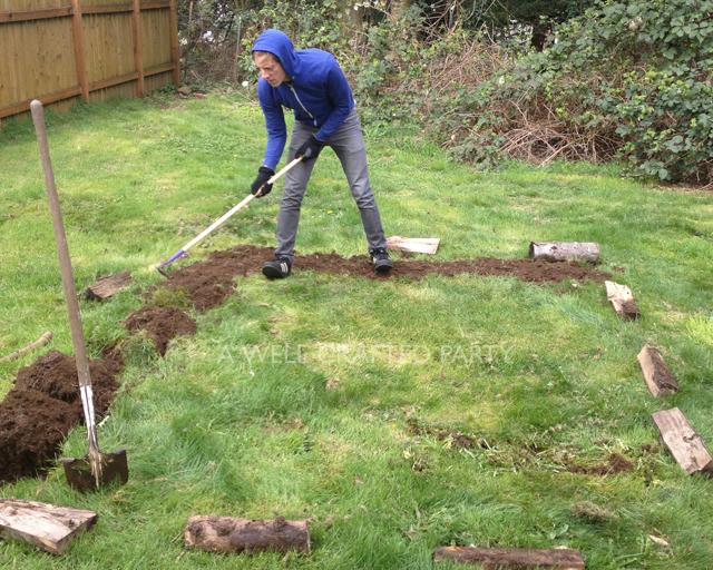 Beginning a Garden Plot