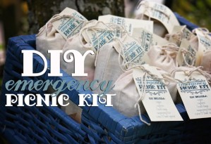 DIY Emergency Picnic Kit from A Well Crafted Party // Featured on Today's Creative Blog