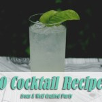 20 Cocktail Recipes from A Well Crafted Party