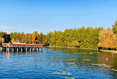 The Incredible Healing Lake Heviz www.awelltravelledbeauty.com