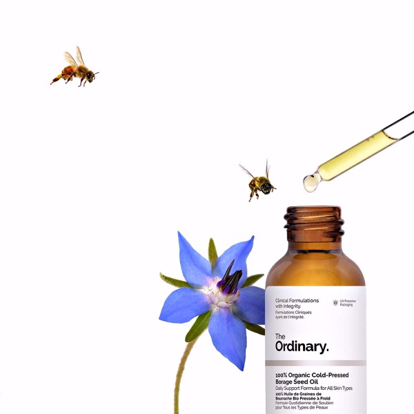 Best of Beauty - The Products that WOWed me in 2018! Why The Ordinary Borage Seed Oil made the cut. www.awelltravelledbeauty.com