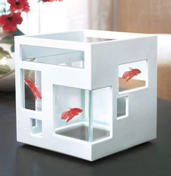 Coffee Table Fish Tank