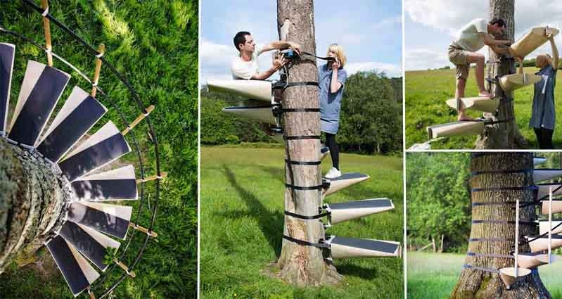 These Spiral Staircases Can Be Strapped On To Any Tree With Ease | Spiral Staircase Tree Trunk