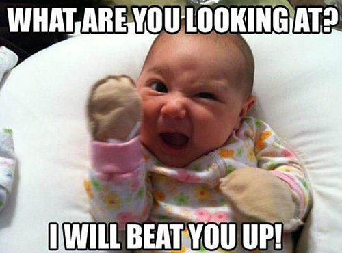 13 Hilarious Baby Memes That Will Brighten Up Your Day