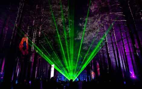Guide to Electric Forest