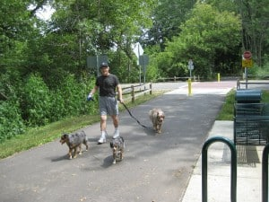 The Awesome Mitten - Kalamazoo River Valley Trail