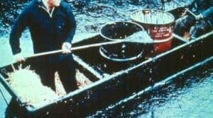 Santa Barbara oil spill clean up_1969