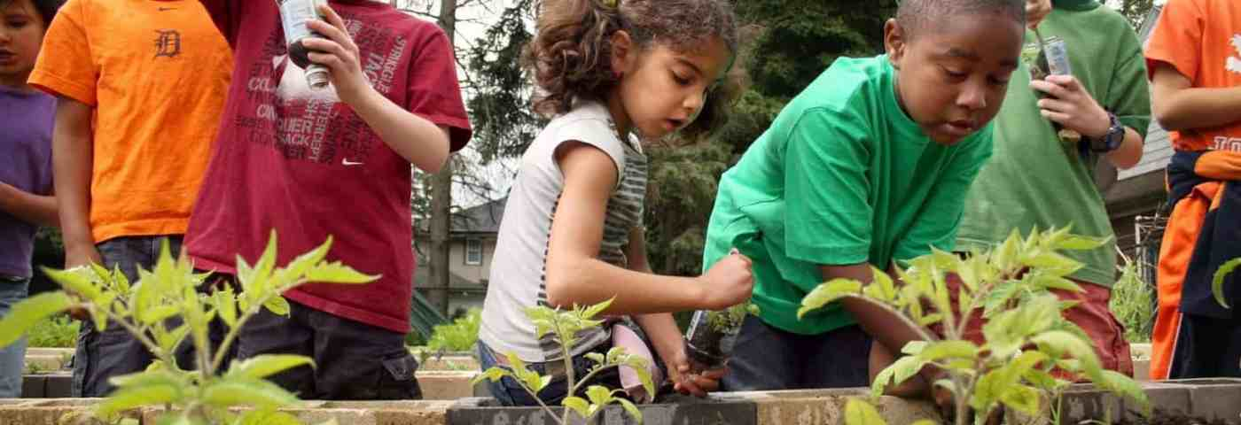 Why You Should Be Excited About Urban Farms