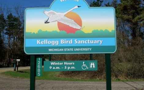 Kellogg Bird Sanctuary