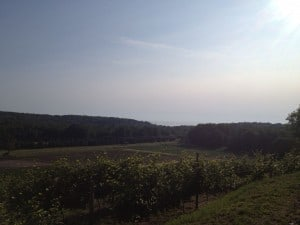 The view from Pond Hill Farm in Harbor Springs... not a bad place to spend an evening.