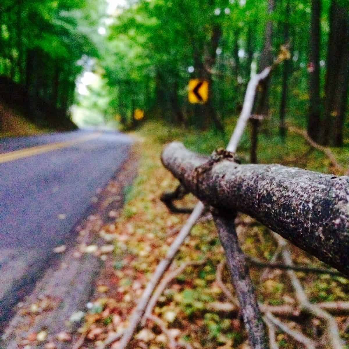 Kalamazoo\'s Fall Color Tour: 4 Roads You Can\'t Miss - Awesome Mitten