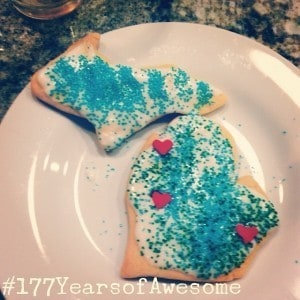 Michigan Birthday Bake-off - The Awesome Mitten