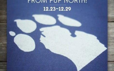 Pup North Giveaway!