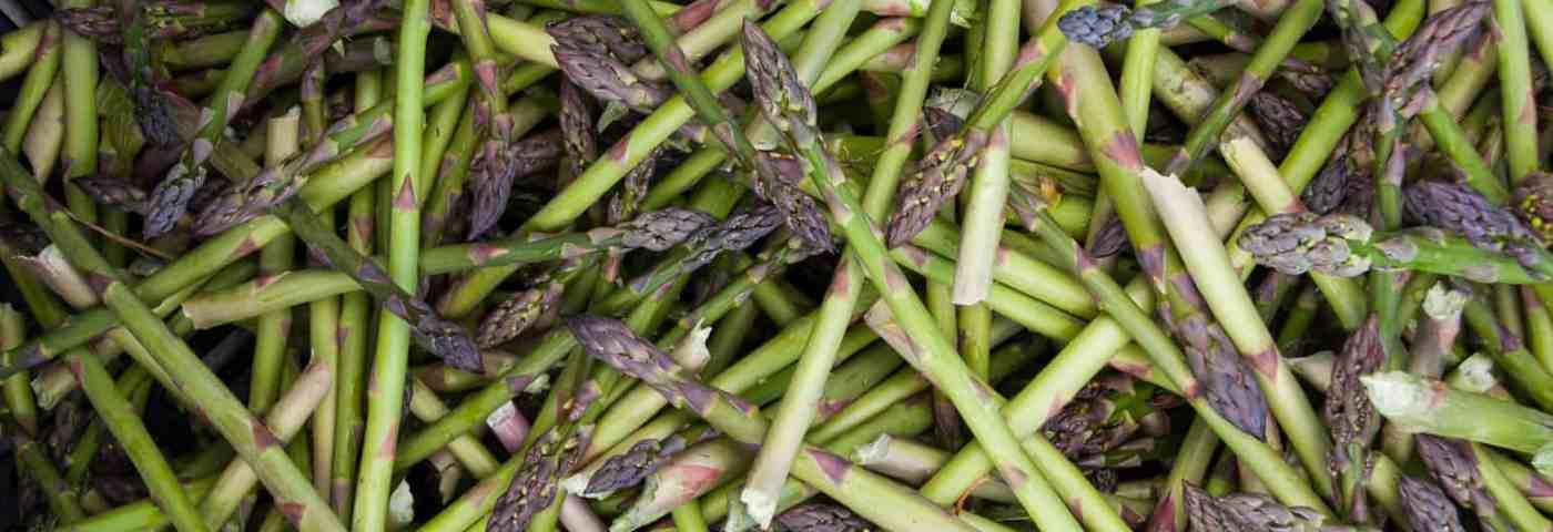 Michigan Asparagus Recipes