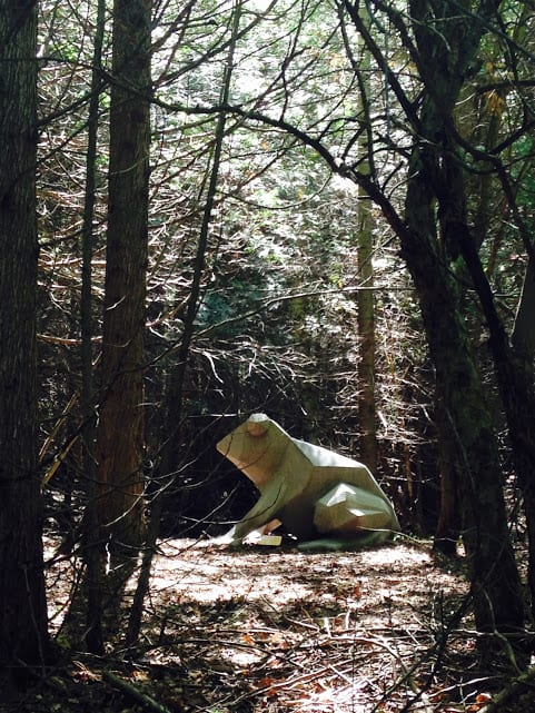 Giant frog on the Nagonaba Footpath - #MittenTrip - Leland -The Awesome Mitten