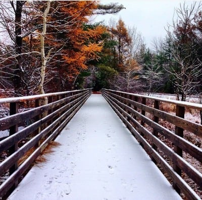 The transition from fall to winter is one of the best times to run. Photo Courtesy of Jennifer Hamilton.