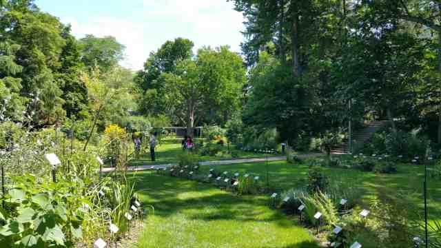 Beal Garden - #MittenTrip Lansing - The Awesome Mitten