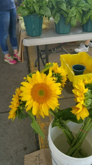 Ann Arbor Farmers' Market - #MittenTrip - Ann Arbor - The Awesome Mitten