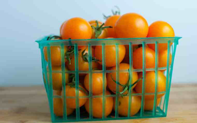 The Awesome Mitten - Michigan Tomato Recipes