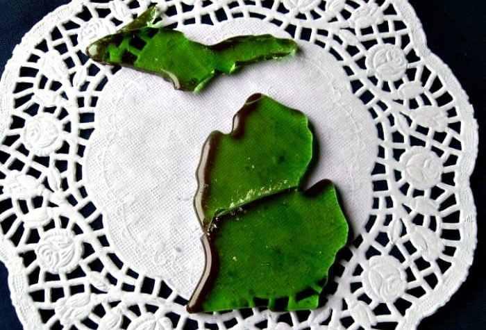 Homemade Candy shaped like Michigan
