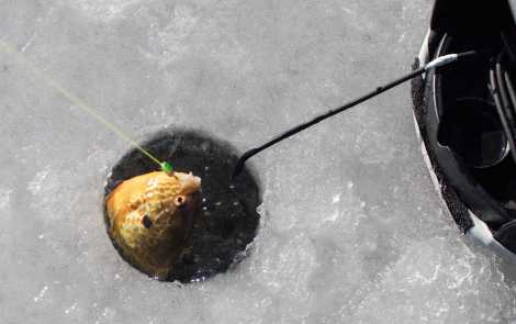 An Ice Cold Adventure: Ice Fishing