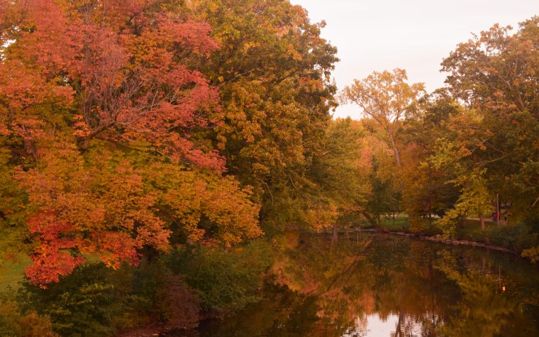 autumn | The Awesome Mitten
