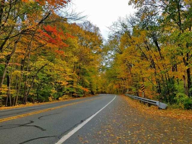 Hines Drive Fall color tour, Metro Detroit, Southeastern Michigan