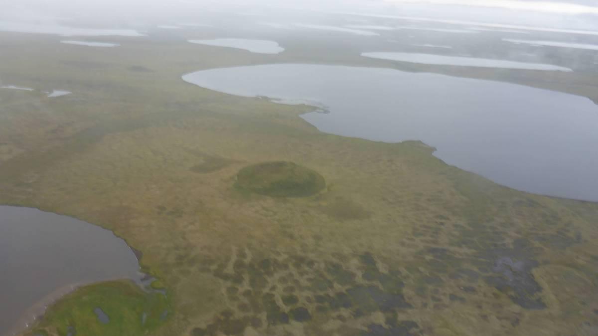 Luftbild der seereichen Permafrostlandschaft auf der nördlichen Seward Halbinsel mit typischen Landformen wie Polygonen, Pingos sowie Thermokarstseen und -senken