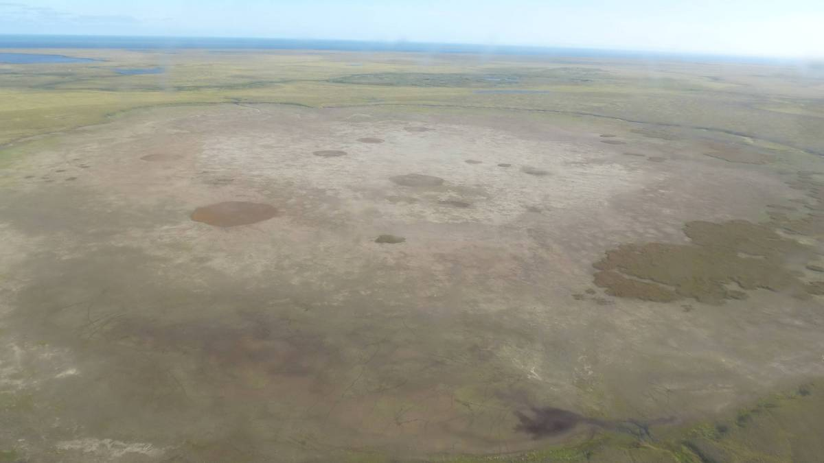 Luftbild eines frisch ausgelaufenen Thermokarstsees mit freiliegenden Seesedimenten