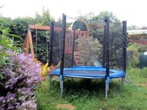 mummy oasis in the garden