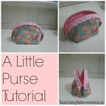 little purse lace zip