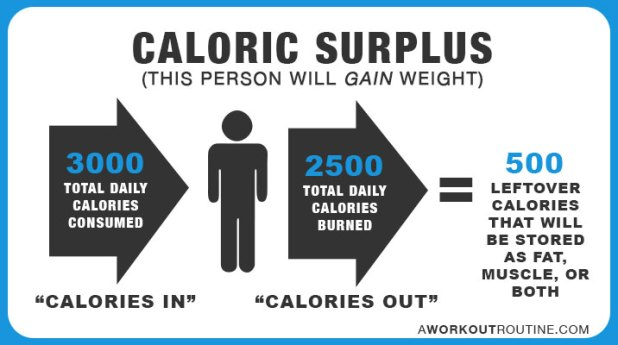 caloric surplus - How Many Calories Should I Eat A Day To Lose Weight or Gain Muscle?