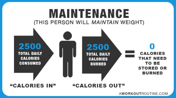 maintenance - How Many Calories Should I Eat A Day To Lose Weight or Gain Muscle?