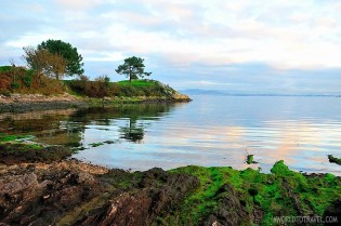 Arousa Norte Experiences what to do in Galicia - A World to Travel (32)