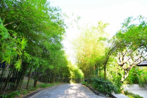The Pavilions Phuket Thailand - A World to Travel-26