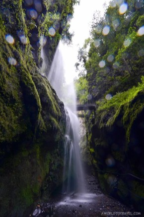 A waterfall spotted at Los Tilos, a laurisilva forest in La Palma.