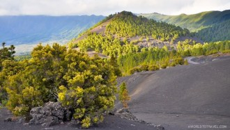 La Palma - Canary Islands- A World to Travel-65