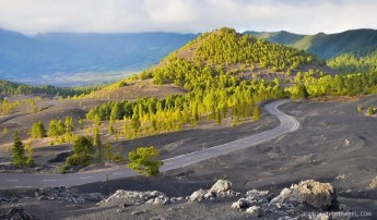 Landscapes at the dunes of Pinar del Pilar, La Palma, look like this.