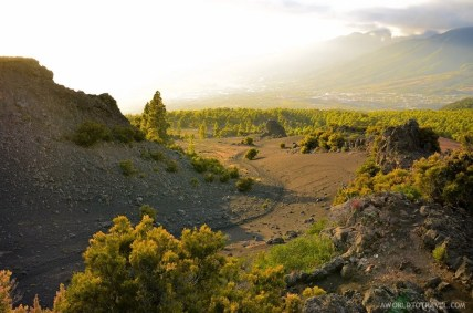 La Palma - Canary Islands- A World to Travel-73