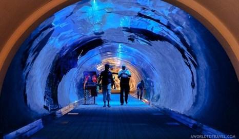 Experiencing Dubai - A World to Travel-152