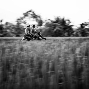 Riding through the rice paddies in Tegalalang Rice Terrace Ubud, Bali island, Indonesia.