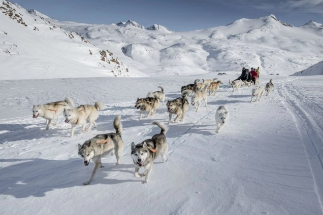 Greenland Dog Sledding - Discover the World of Greenland Top 6 Arctic Attractions - A World to Travel