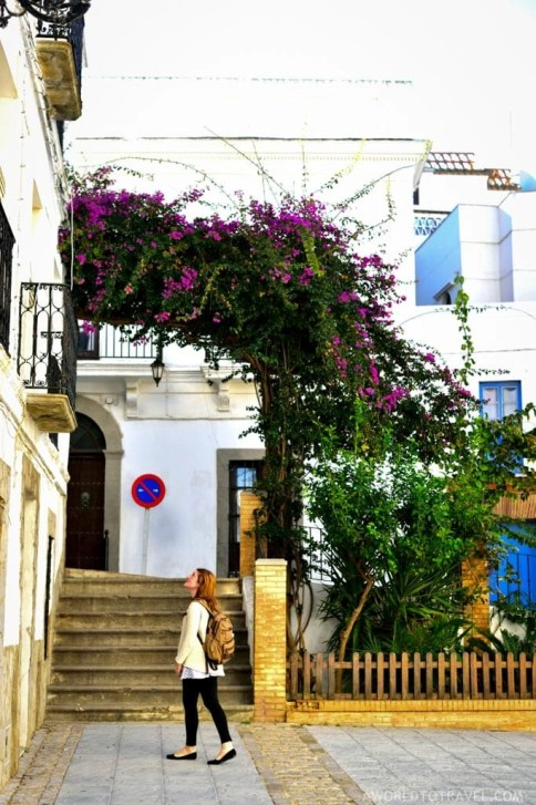 Andalucia Road Trip Itinerary and Tips - A World to Travel-20