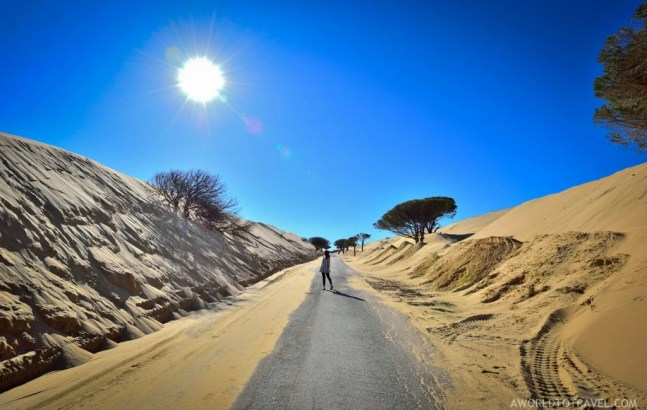 Andalucia Road Trip Itinerary and Tips - A World to Travel-43